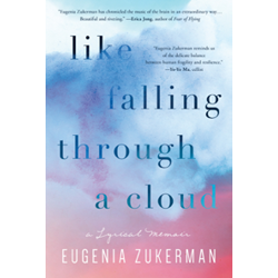 Like Falling Through a Cloud by Eugenia Zukerman
