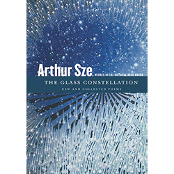 The Glass Constellation by Arthur Sze